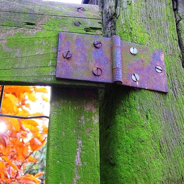 old-fence-1-1468320
